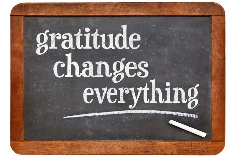 Embracing Gratitude in your Practice